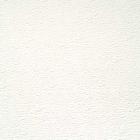 TUILE AGROVERRE 2' X 4' X .090'' - BOSSELÉ BLANC
